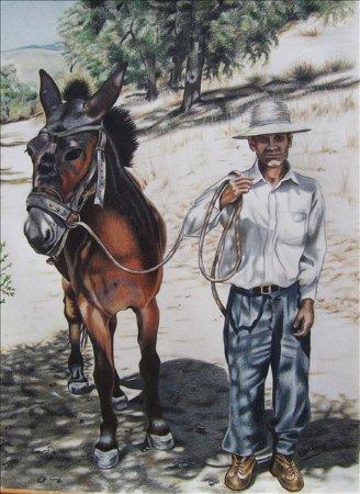 El Arriero (Hombre y Mulo 2)